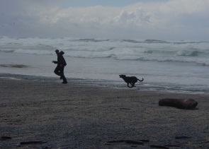 Mikey chasing Fox on the beach