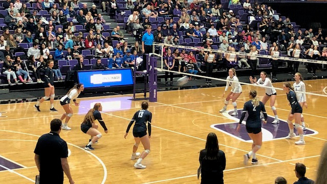 BYU's volleyball game